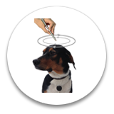 помощь животным энергетическая ручка